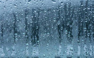 Condensa sui vetri delle finestre? Perché?